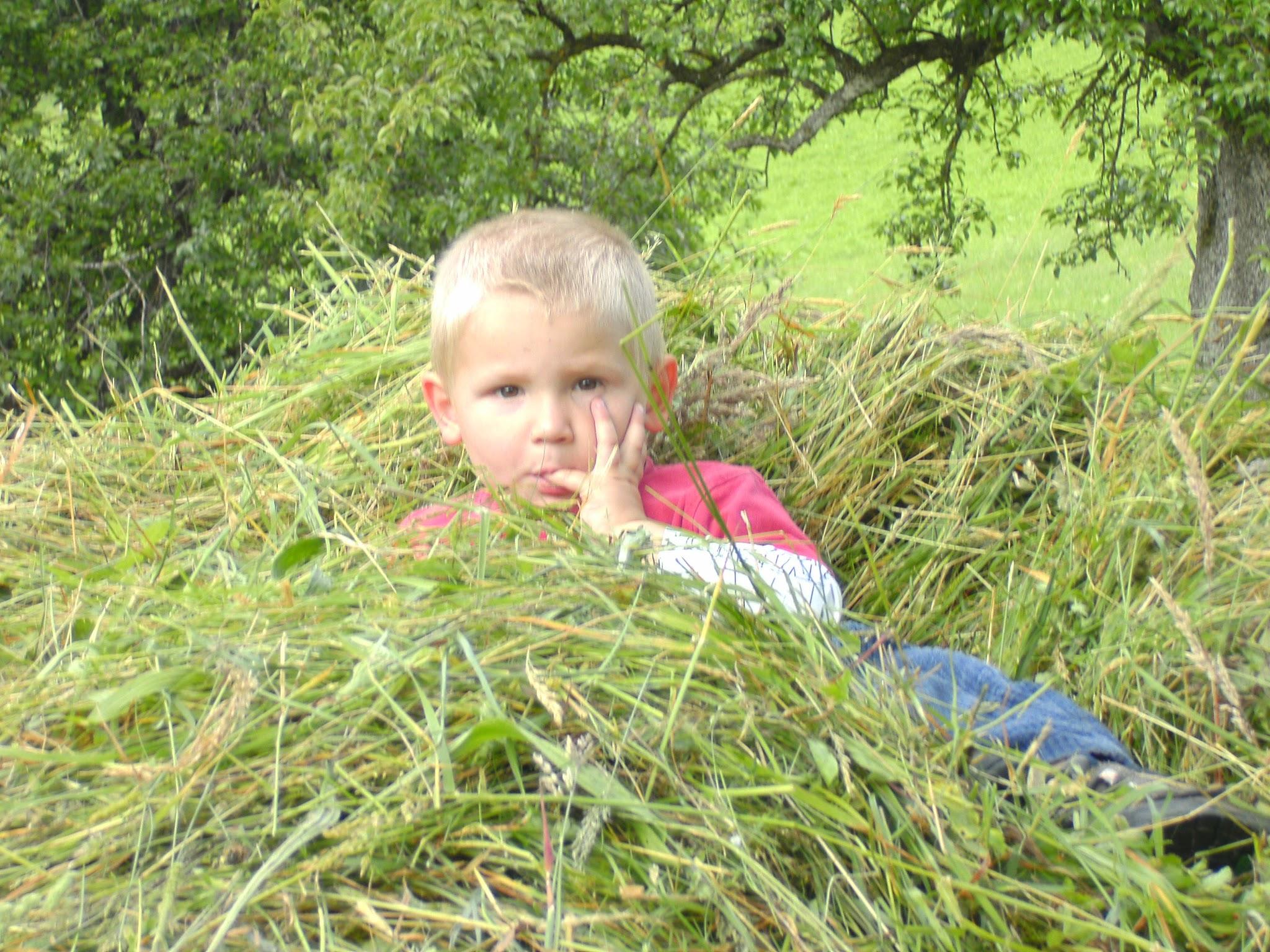 BILD0021 - Urlaub auf dem Braun-Hof in Durham / Fischbachau